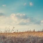 Тур «Корпоративная Большая псковская энциклопедия» (4 дня) заезды с 1 мая по 1 октября от туроператора «Атмосфера путешествий» в Пскове